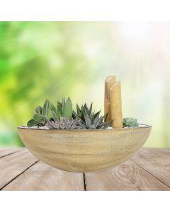 Succulent Boat Garden