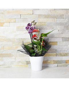 Exquisite Orchid & Anthurium Arrangement
