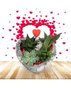 Heart to Heart Succulent Rock Garden