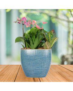 Floral Tropical Garden