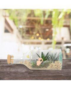 Succulent Garden in a Bottle
