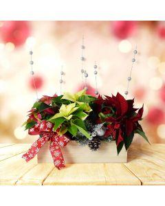 Colorful Christmas Arrangement