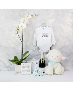 ADORABLE SHEEP BABY GIFT SET WITH CHAMPAGNE