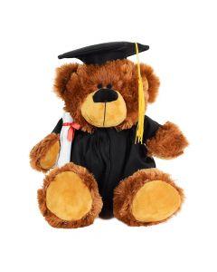 My Grad Teddy Bear