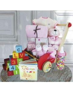 Baby Girl Baby Buggy Gift Basket