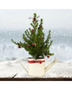 Decorate Your Own Mini Tree - Gardening Kit