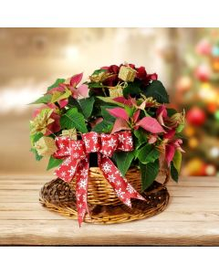 Christmas Cheer Bouquet