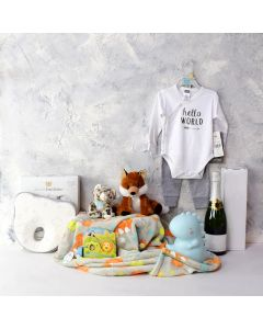 BABY'S PLAYTIME & NAPTIME GIFT SET WITH CHAMPAGNE