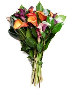 Cool Elegance Calla Lily Bouquet