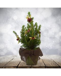 Decorate Your Own Mini Tree - Rustic Kit
