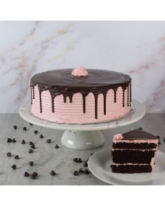 Large Chocolate Raspberry Cake
