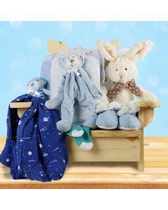 Snuggle Bug Baby Boy Gift Basket