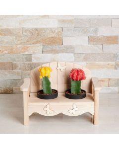 Desert Dream Garden Bench, cactus gift baskets, potted plant gifts, gifts, cactus potted plant, US Delivery