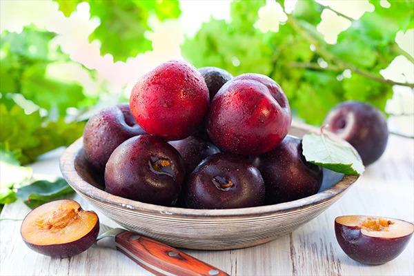 Fruit Gift Baskets USA